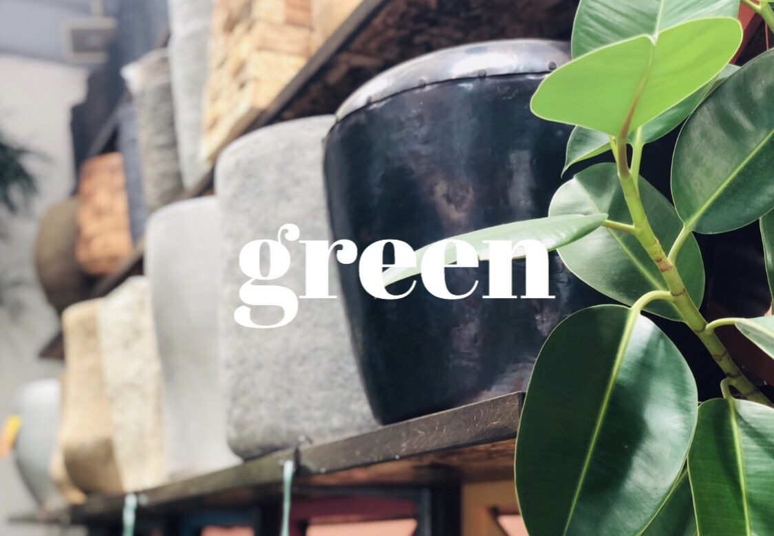 (🛍)購入品いろいろ❤️<br>#12円の食材🍳<br>#ちびまるのおもちゃ🦖<br>#お庭の植物探し👪